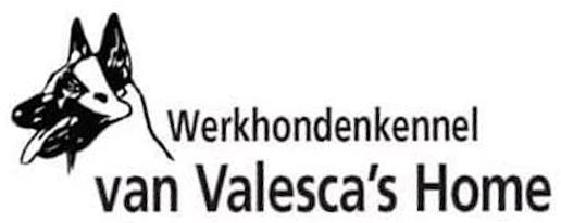 Werkhondenkennel Valesca's Home